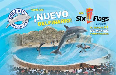 dolphin-disc-six-flags-mexico