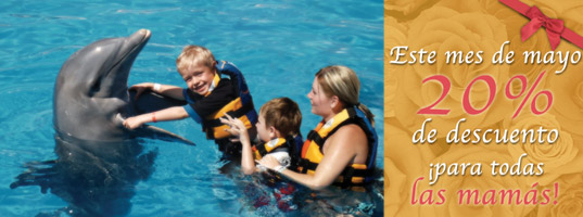 Feliz día de las Madres de parte de Dolphin Discovery