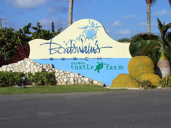 "Granja de Tortugas en Gran Caimán ""Boatswain's"""