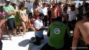 Rescate de delfín varado en playas de Cancún.