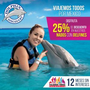 Dolphin Discovery ofrece el 25% de descuento.