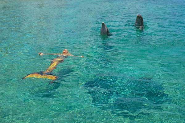 Una sirena, la voz de las especies marinas